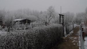 Gaerten Winter02