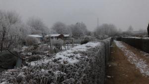 Gaerten Winter03